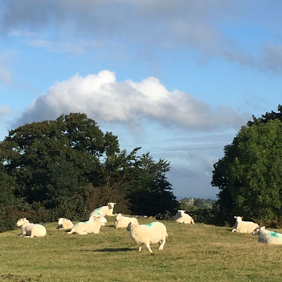 shropshire, travel to shropshire, shropshire UK,