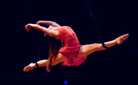 Spellbound-Circus-Act-Straps